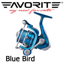 Favorite Blue Bird