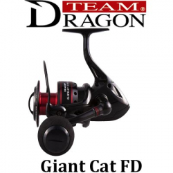 Dragon Giant Cat FD