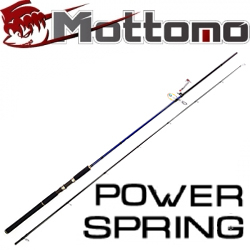 Mottomo Power Spring