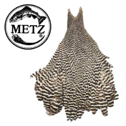 Metz #1Hen Neck Grizzly
