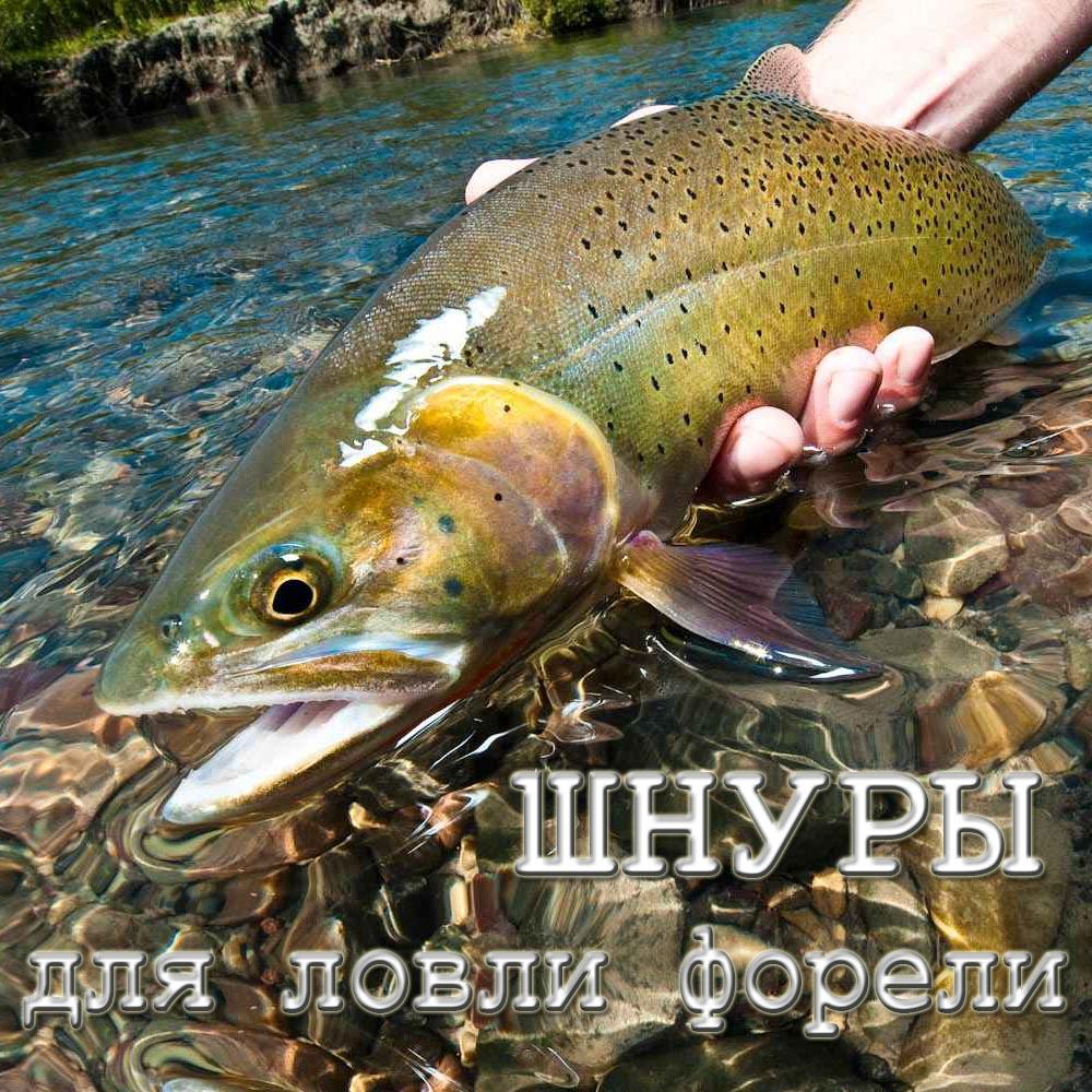 Правила рыбалки в сочи